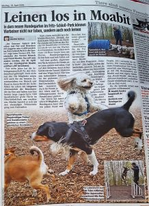 Mensch und Hund Moabit e.V., Mensch und Hund AG, Hund Moabit, Angstprävention, Integration, Hundegarten Moabit, Hunde App, Auslaufgebiete, Hundeplatz, Agility, Hundesport, Berlin Hund, Berlin mit Hund, Berliner Schnauze, Hundebuch, Hundehauptstadt Berlin, Hundebuch Berlin, Berliner mit Hund, Hunde Informationen, Leben mit Hund, Flirtfaktor Hund, Hund Berlin, Hund Geschenk, Hundeauslaufgebiete Berlin, Hundebesitzer, Hundeblick, Hundebuch, Hundefans, Hundefotos Berlin, Hundefreunde, Hundehauptstadt, Hundekot Berlin, Beutelspender, Hundeperspektive, Hundeplatz Berlin, Smiling Berlin Verlag, Hundethemen Berlin, Hundewelt Berlin, Kollege Hund, Berliner Hundebesitzern, Vier Pfoten, Wirtschaftsfaktor Hund, Parknutzung, Hundegesetz, Hundehalter, Nicht-Hundehalter, Parknutzung, Parkbesuch, Studie, Umfrage